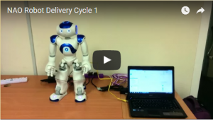 Assessment and feedback analytics with humanoid robot